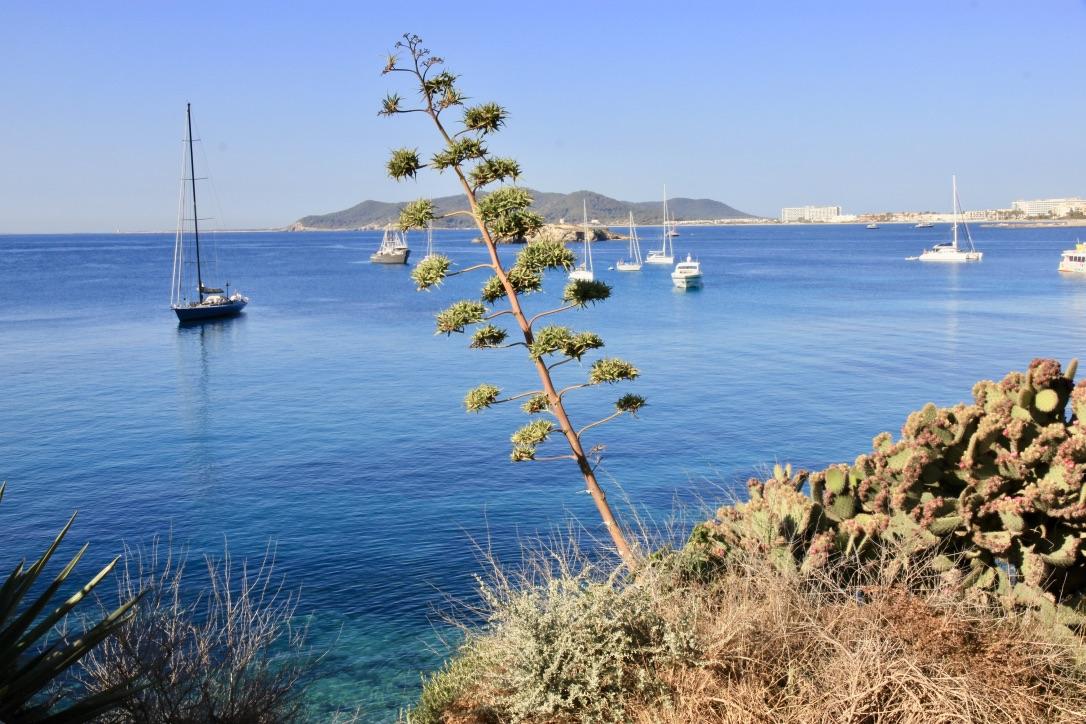 Mare di Ibiza