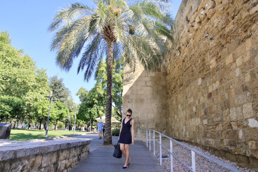 Erasmus a Córdoba