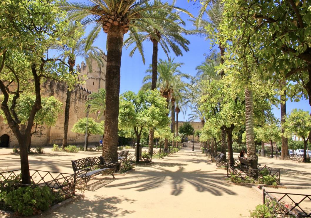 Córdoba, Erasmus in Spagna