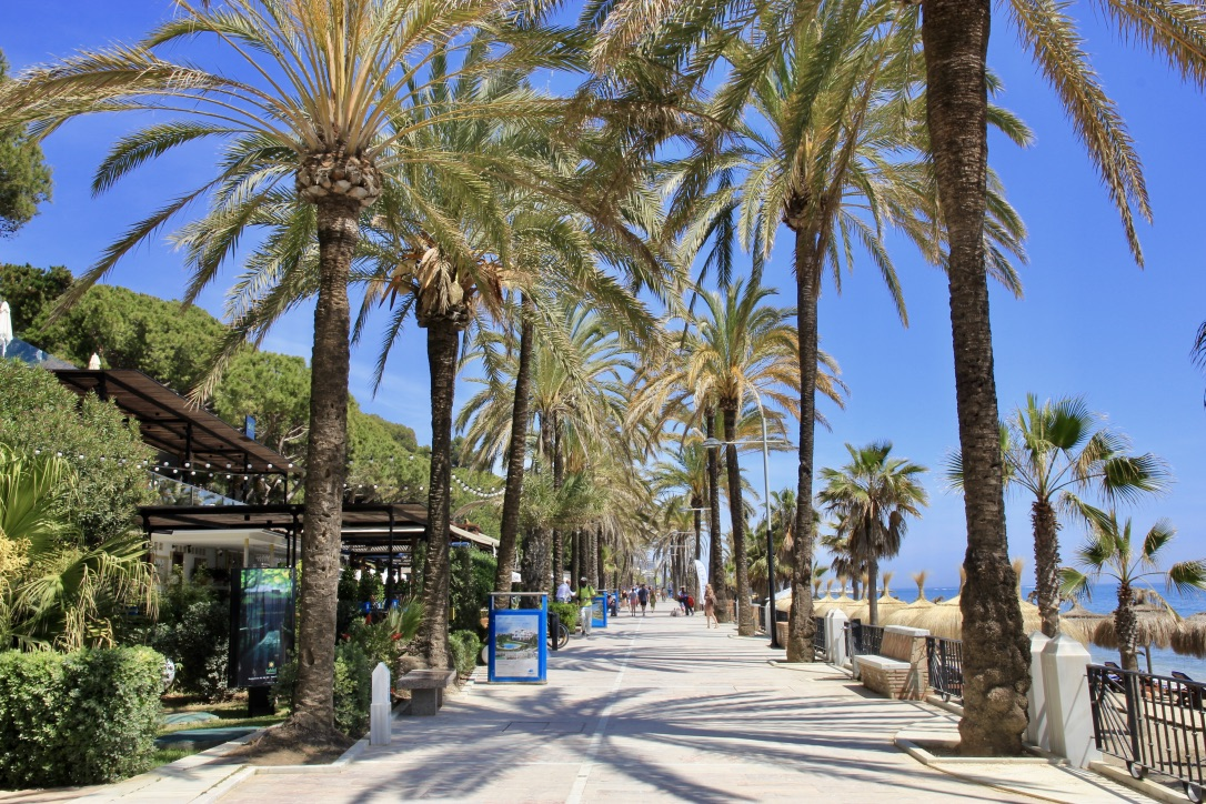 Marbella, cosa fare