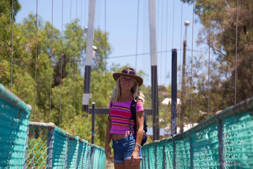Intervista a Anna, La Tartaruga Volante