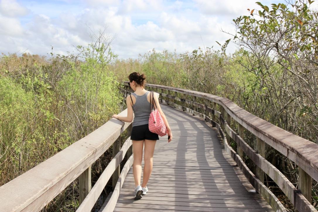 Come visitare le Everglades