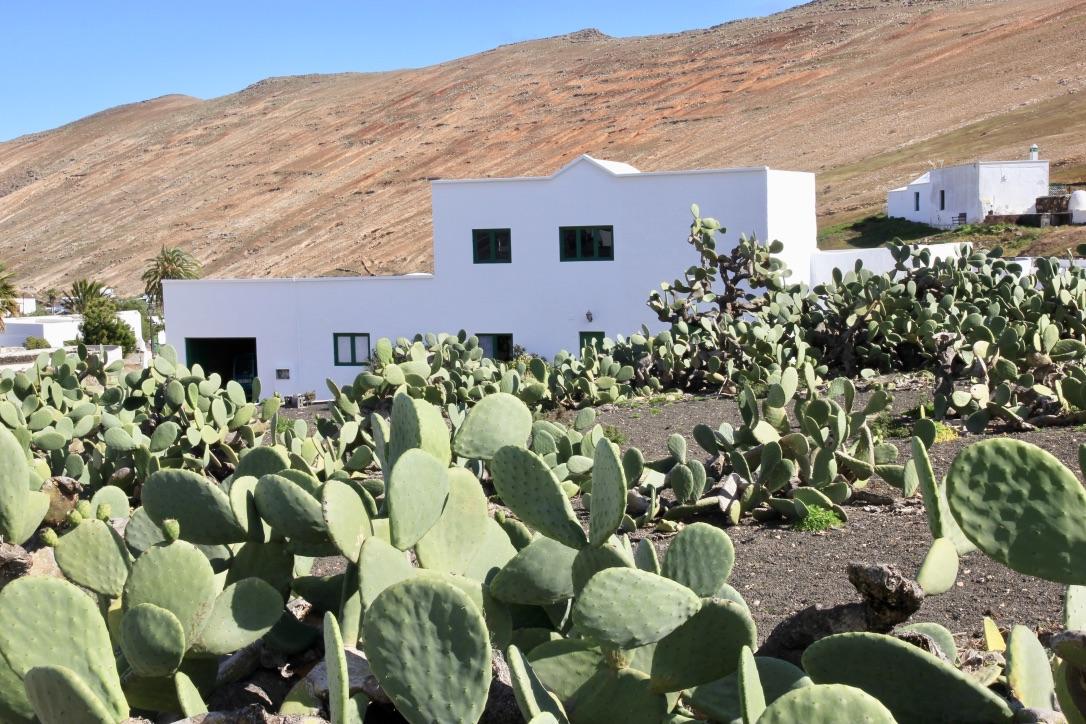 Lanzarote, case bianche
