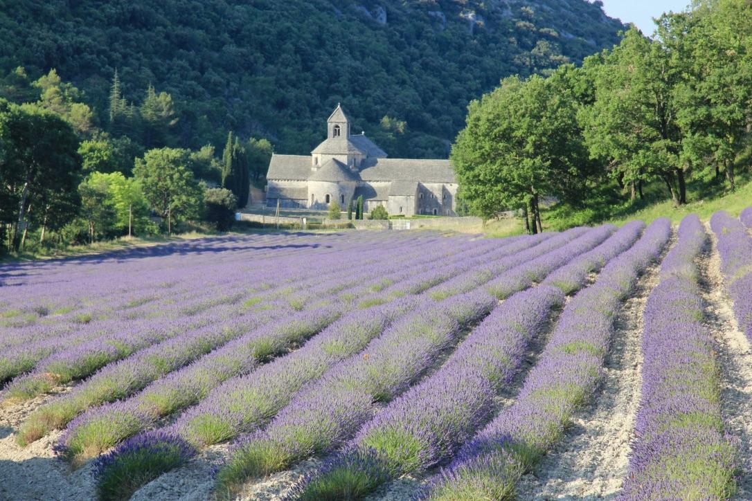Abbazia di Senanque, Francia