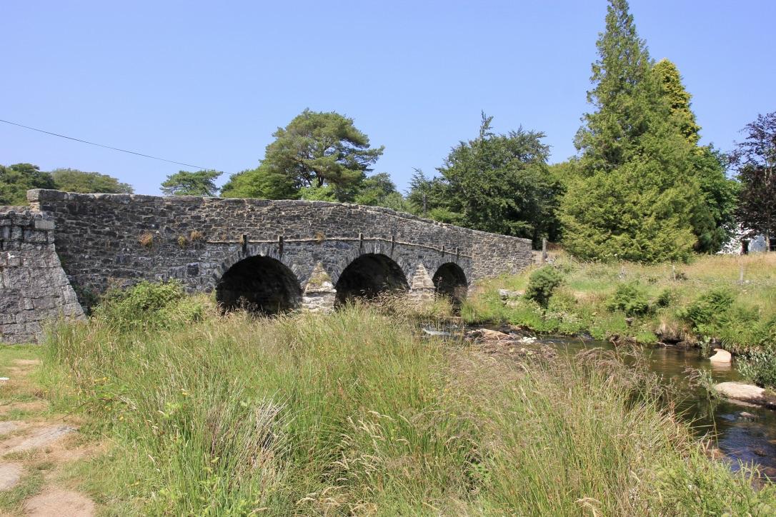 Brughiera di Dartmoor