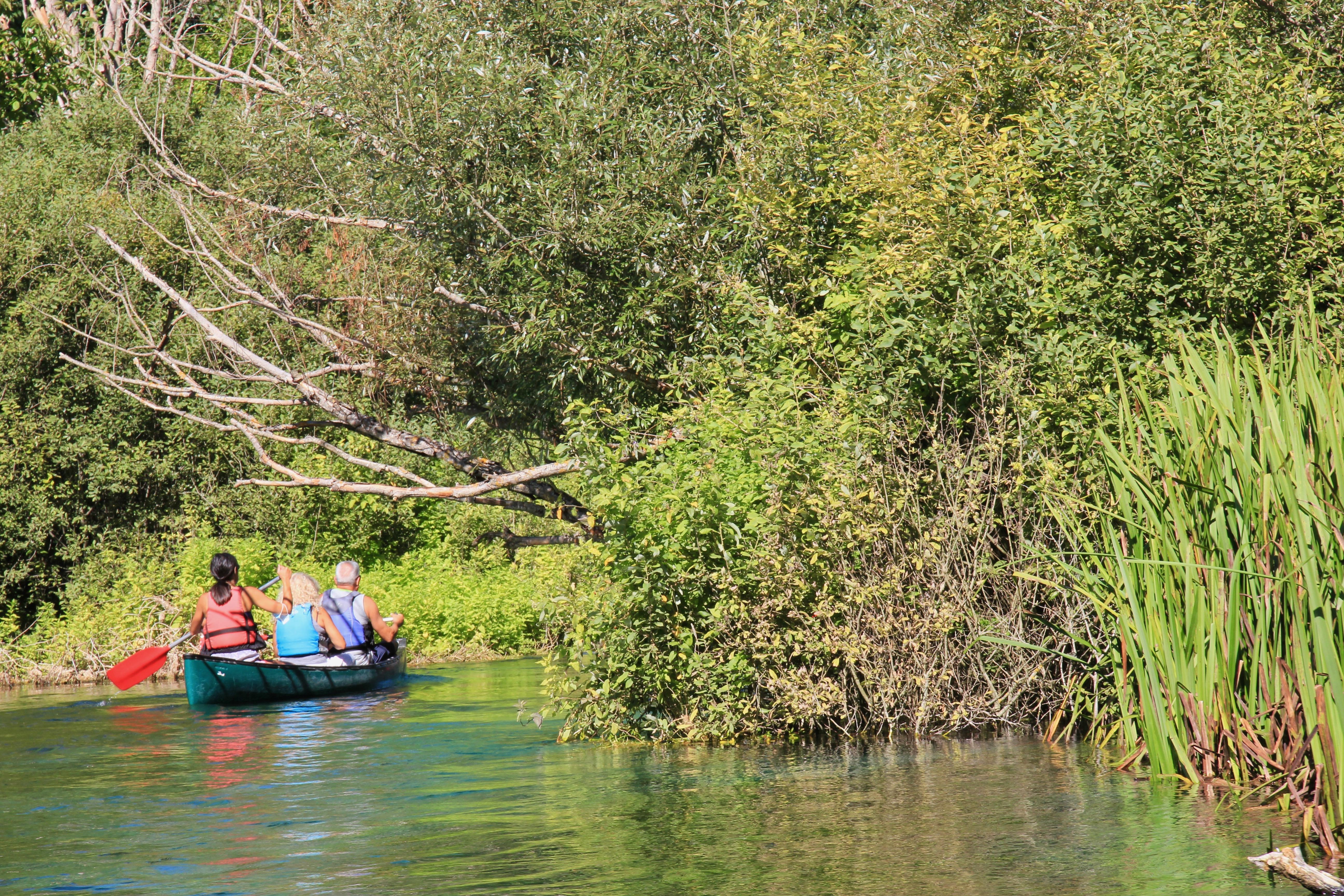 Il Bosso - escursione in canoa