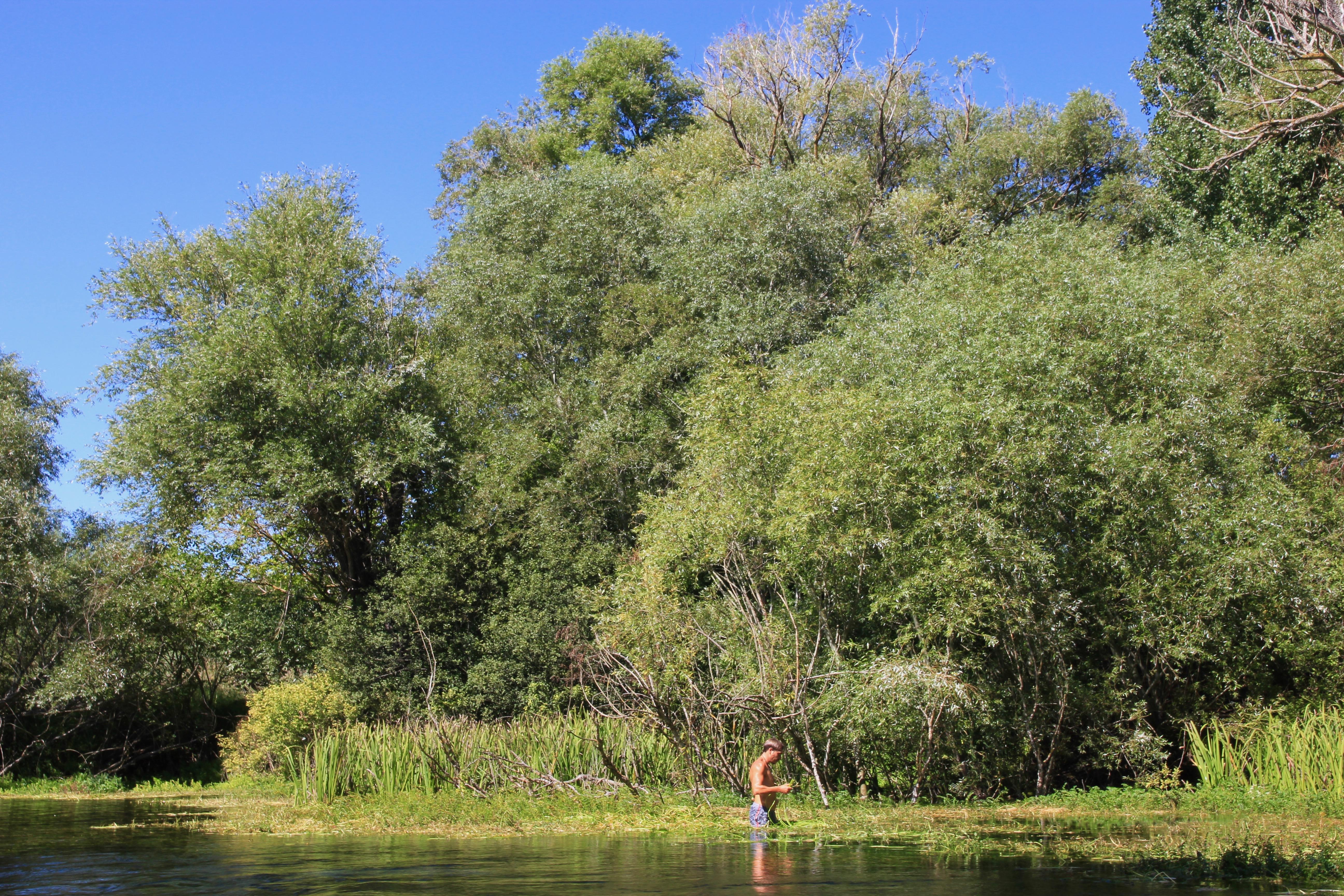 escursione in canoa il Bosso