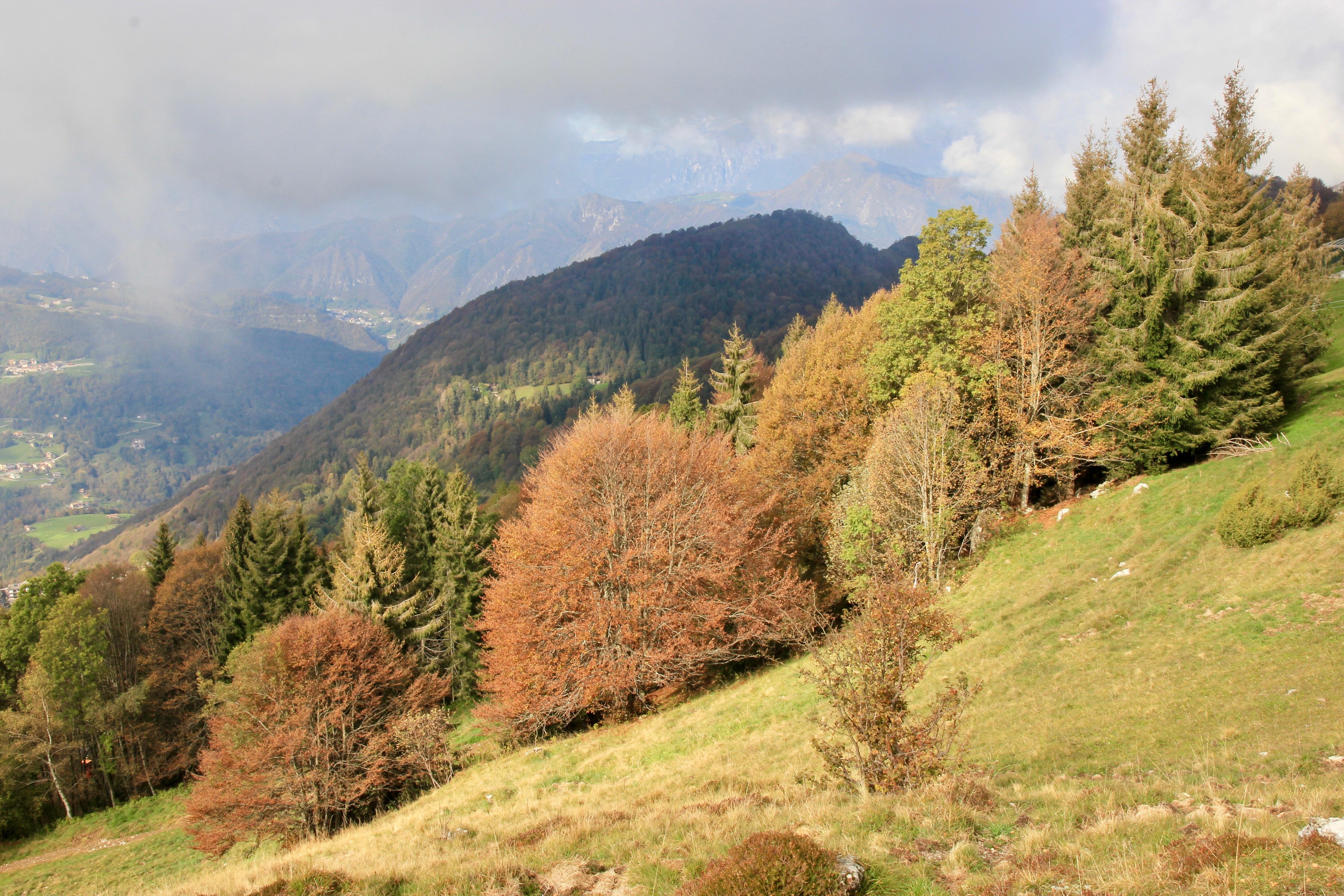 Monte Poieto in autunno