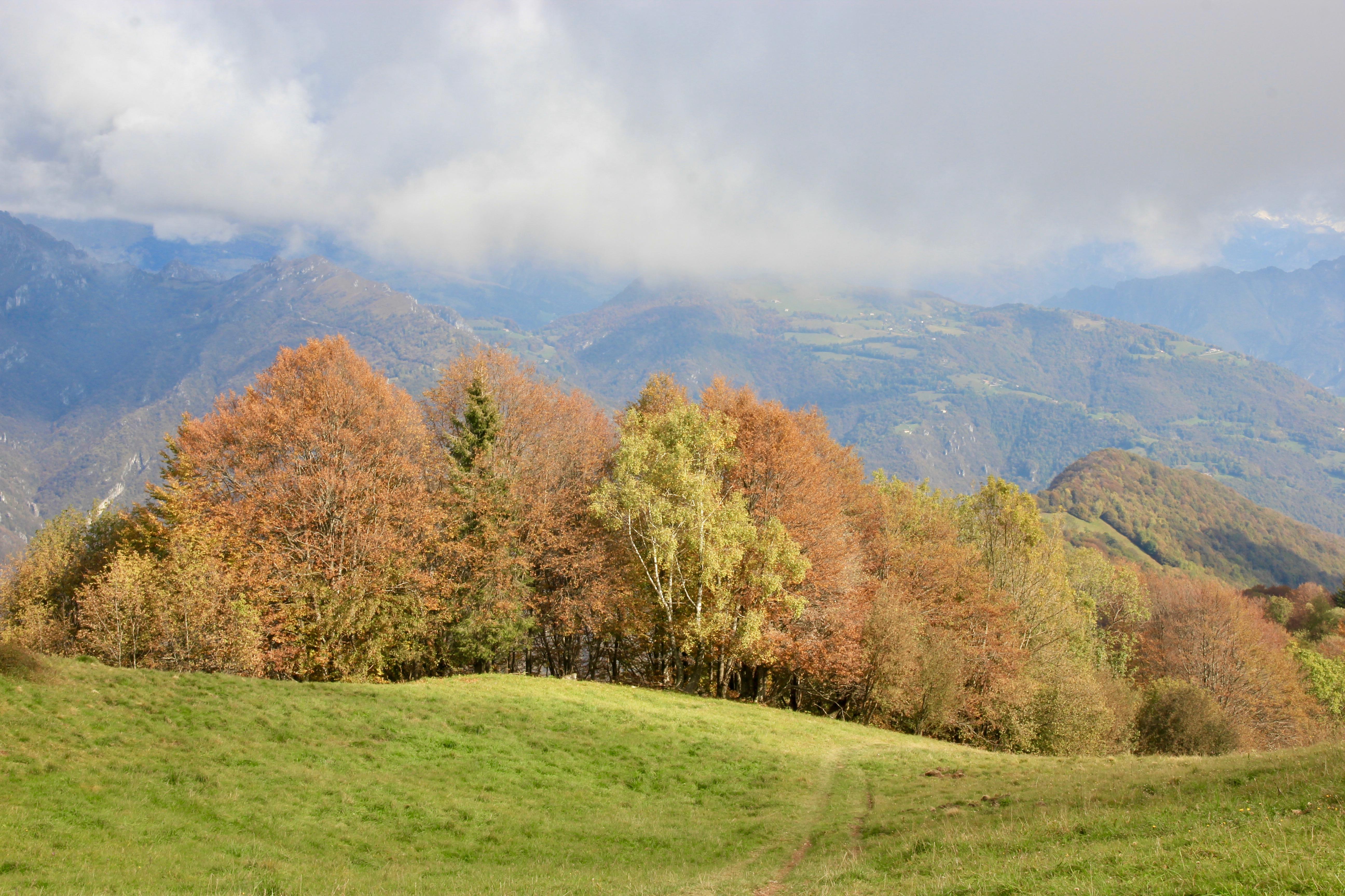 Rifugio Monte Poieto