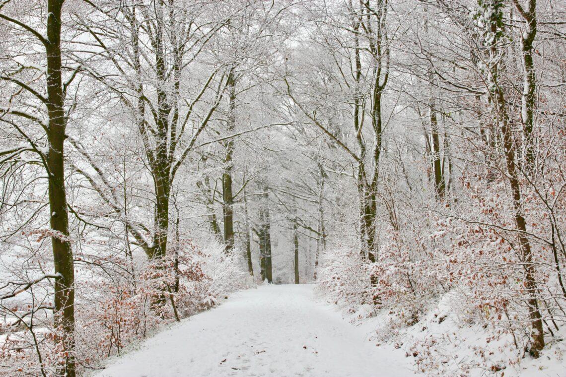 Inverno a Zurigo
