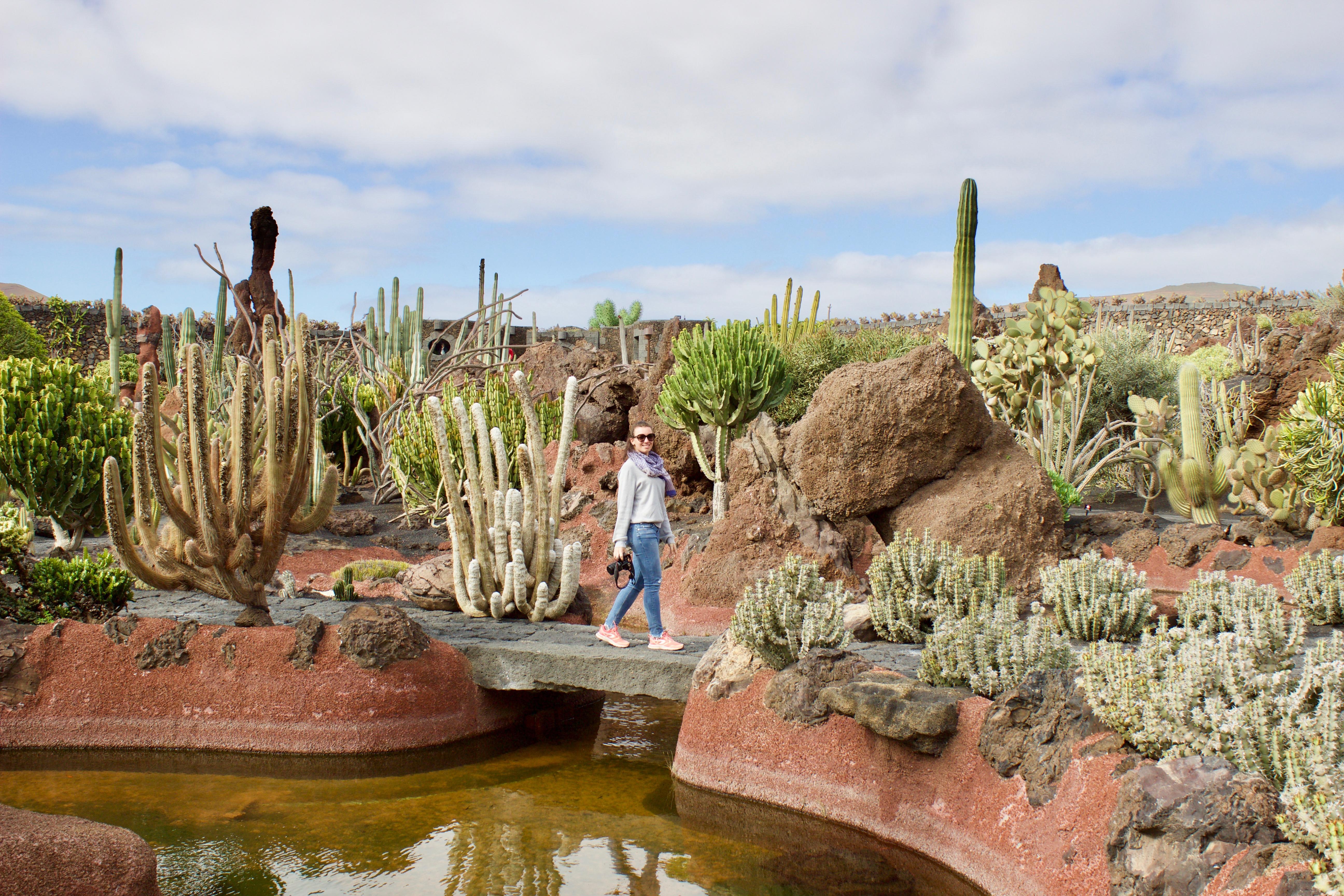 Jardín de cactus - Lanzarote