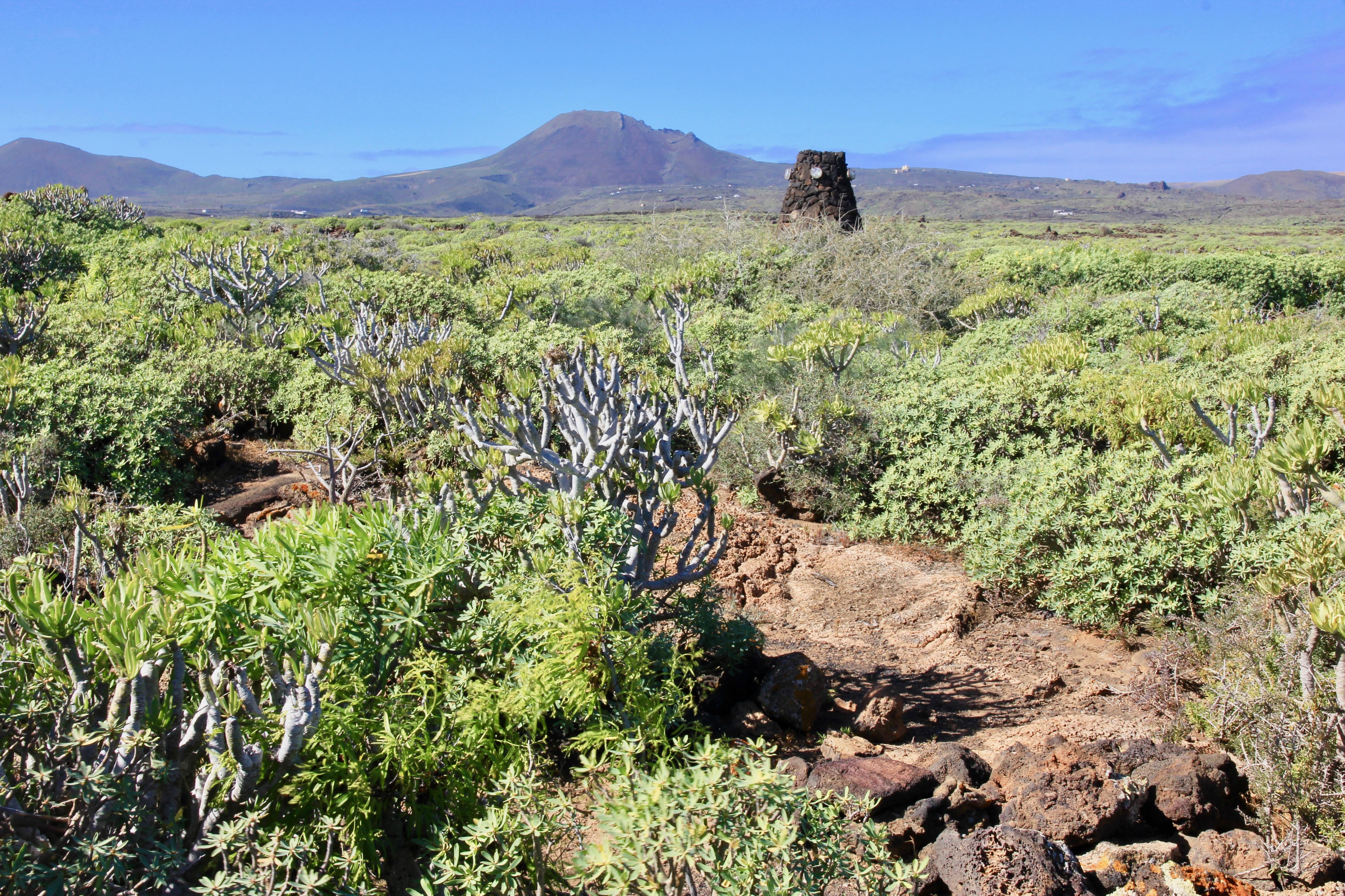 Cosa vedere nel nord di Lanzarote