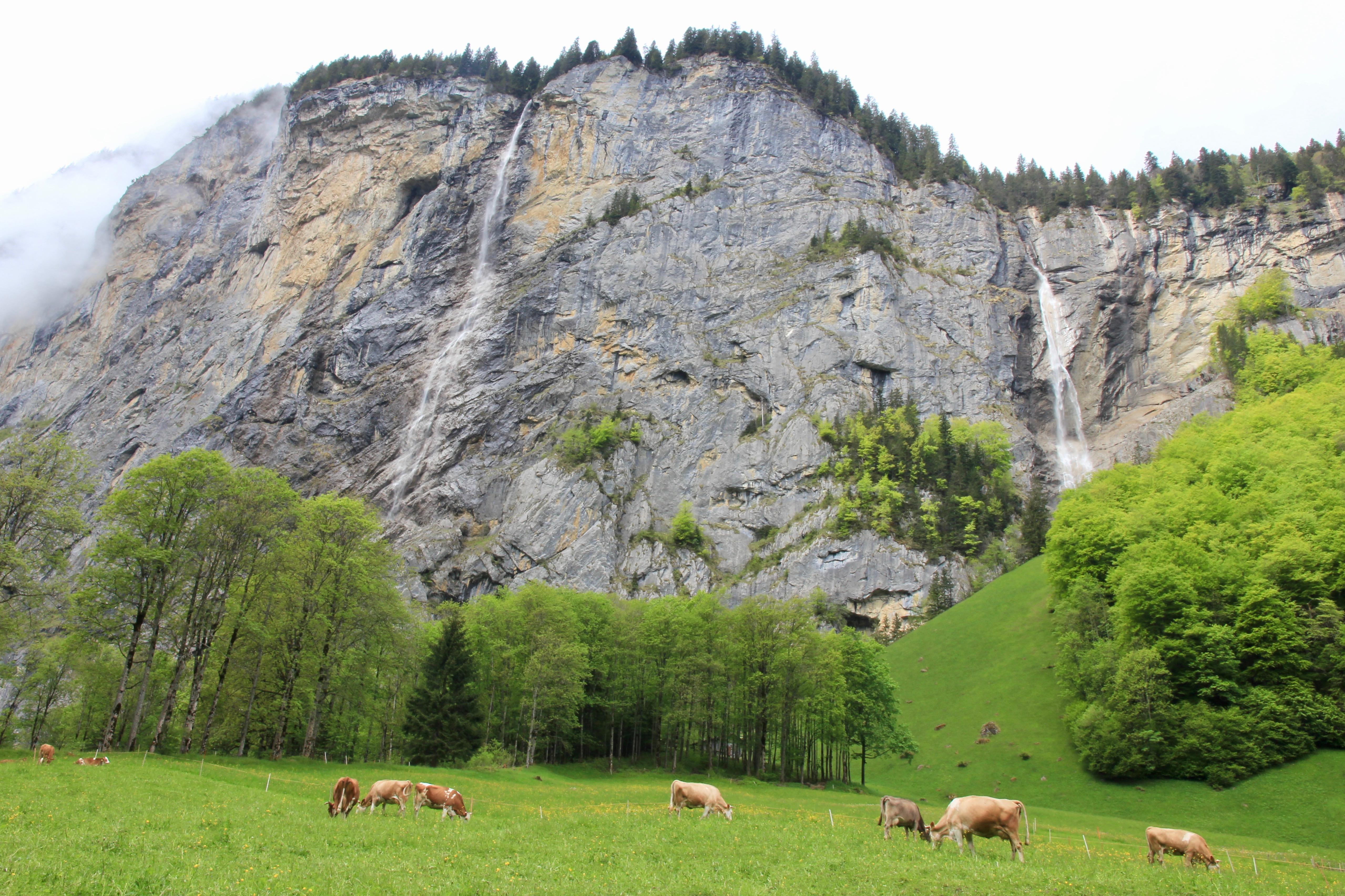 Paese delle cascate, Lauterbrunnen